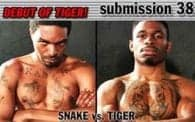 Submission 38: Snake vs. Tiger