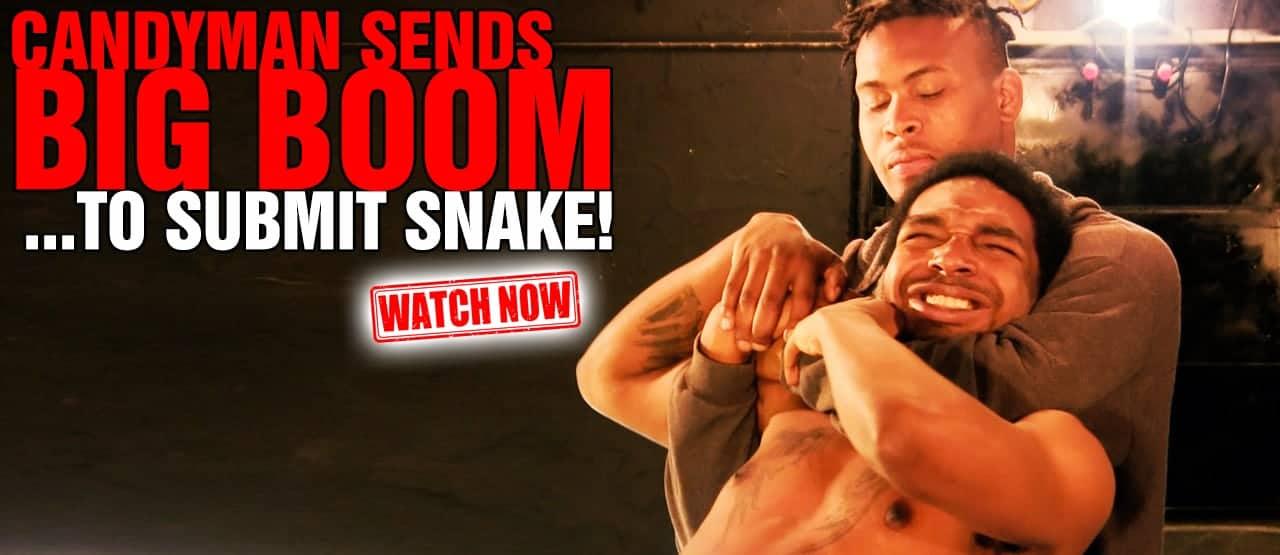 banner_snakeboom